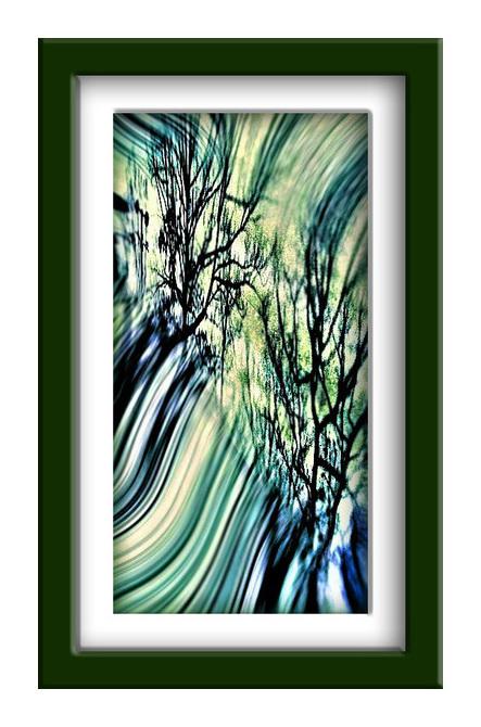 ● 影木立!