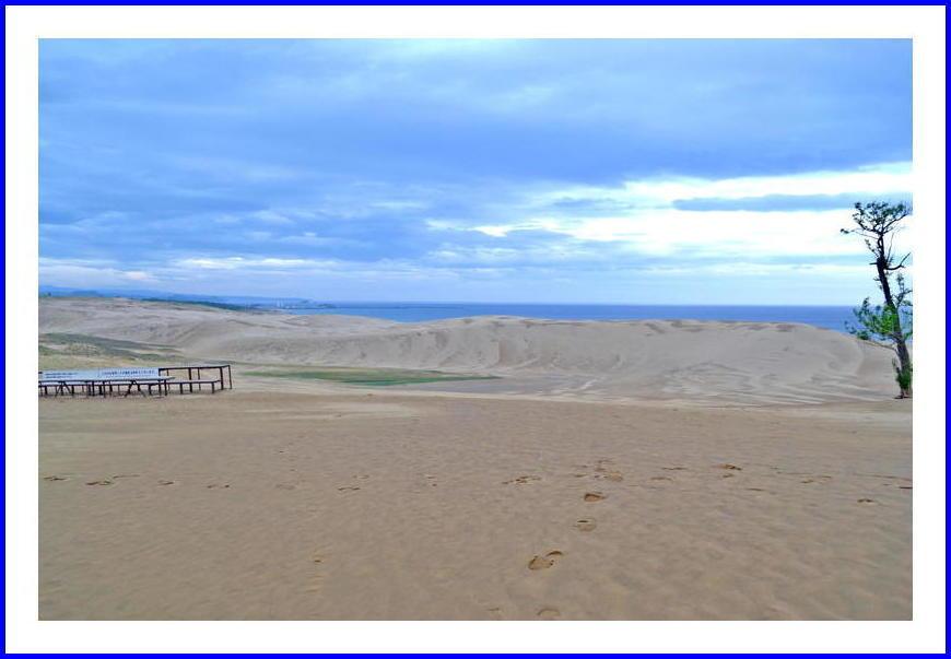 朝の鳥取砂丘