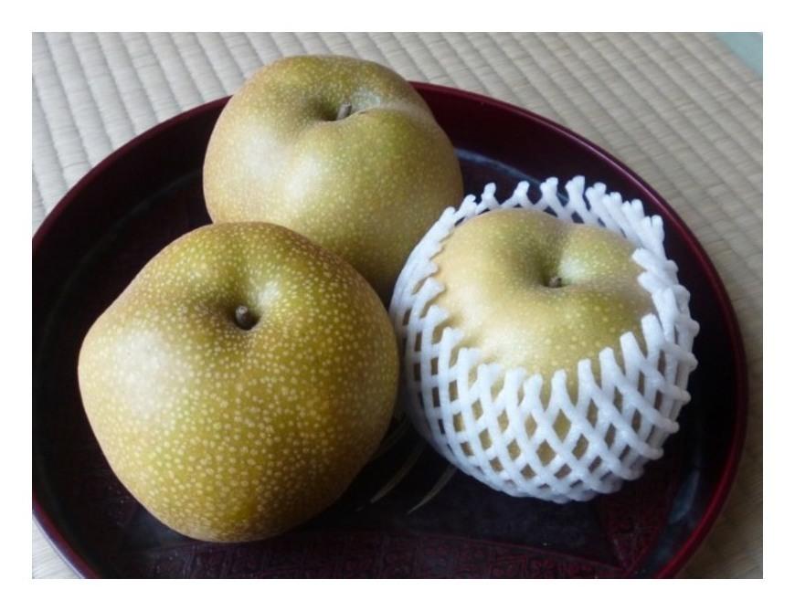 甘い梨・豊水