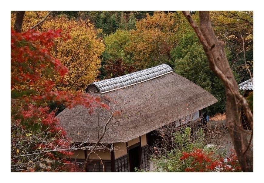 古民家の秋