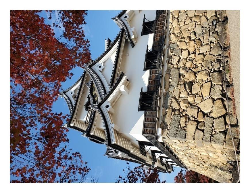 紅葉越しの彦根城