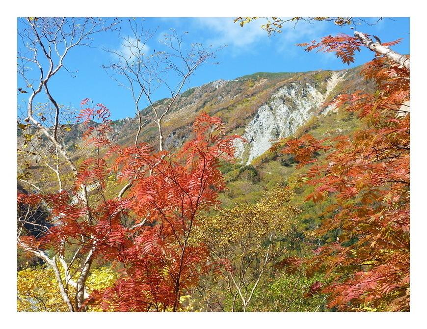 涸沢の秋 3