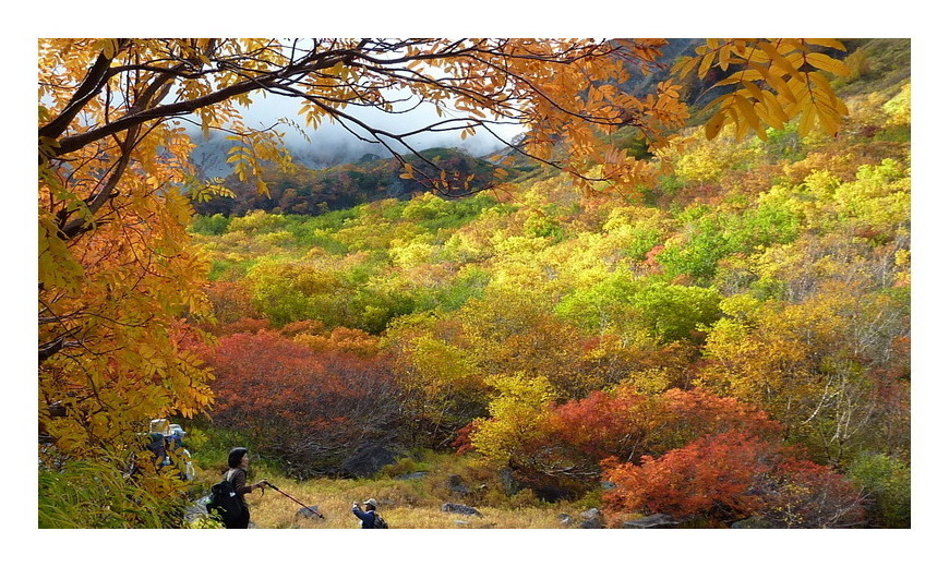 涸沢の秋 5
