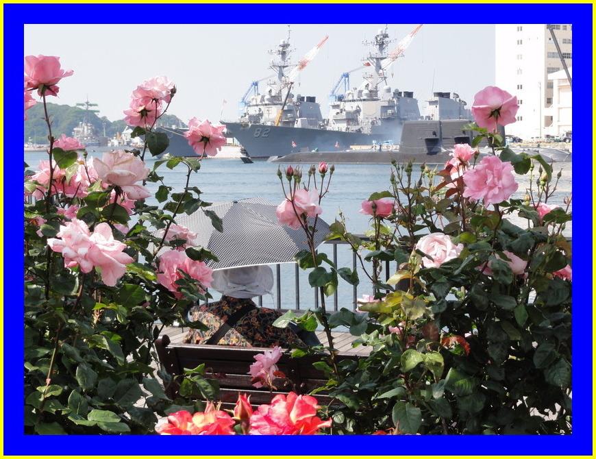 バラと軍艦その2