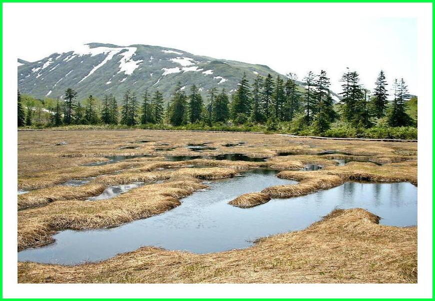 ニセコ、神仙沼。