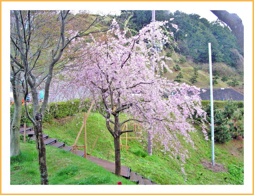 京丹後、伊根町。