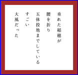五体投地(五行歌)