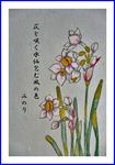 日本水仙の俳画
