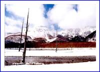 冬の大正池