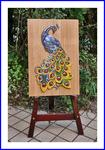 浮き絵で描く孔雀
