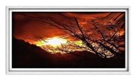 ● 里山の落陽・3景!�B