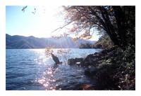 栃木県 日光 中禅寺湖畔 逆光撮影