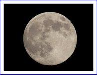 満月見ましたか?