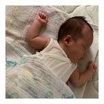 曽孫の寝顔 �B