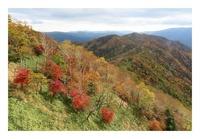 日光、半月山の紅葉