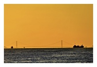 Bridge世界一