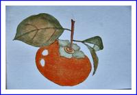 柿のはがき絵