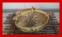 植木鉢の金接ぎ