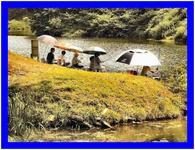 ダム湖 釣り